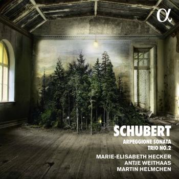 Cover Schubert: Piano Trio No. 2 in E-Flat Major, D. 929 & Arpeggione Sonata in A Minor, D. 821