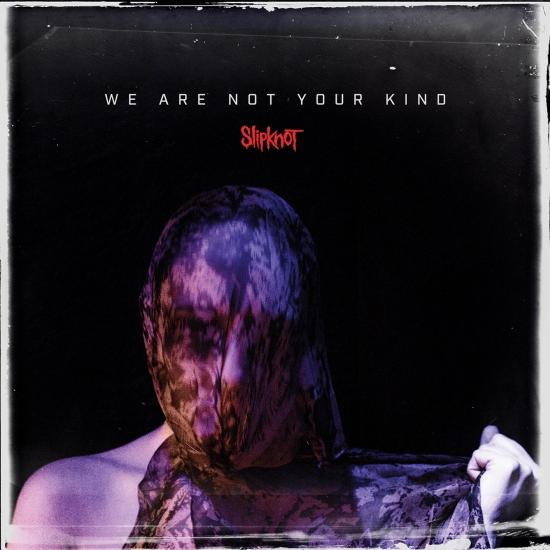 Cover We Are Not Your Kind