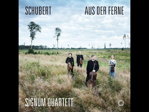 Video Signum Quartett: 'Aus Der Ferne' (Video)