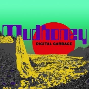 Cover Digital Garbage