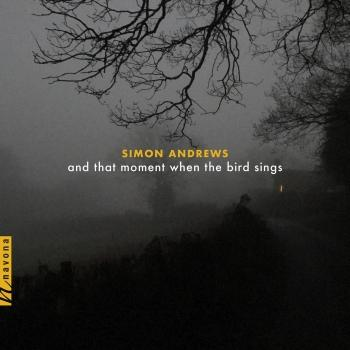 Cover Simon Andrews: And That Moment When the Bird Sings
