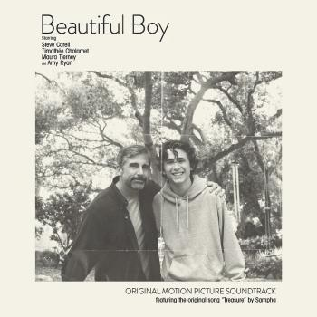 Cover Beautiful Boy (Original Motion Picture Soundtrack)