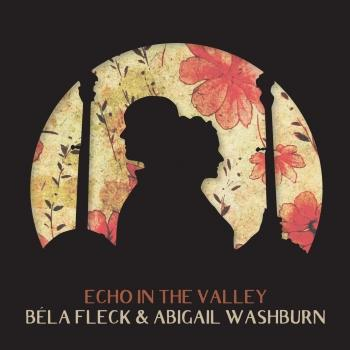 Cover Echo In The Valley