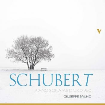 Cover Schubert: Piano Sonatas, D. 157 & 960