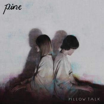 Cover Pillow Talk