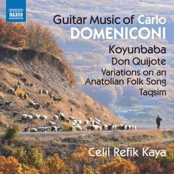 Cover Domeniconi: Guitar Music