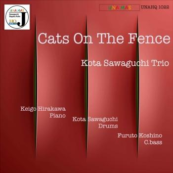 Cover Cats on the Fence