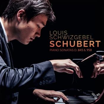 Cover Schubert: Piano Sonatas, D. 845 & 958