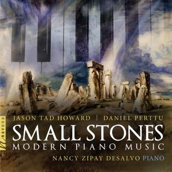 Cover Small Stones: Modern Piano Music