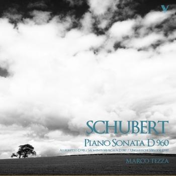 Cover Schubert: Piano Sonata No. 21 in B-Flat Major, Allegretto in C Minor & 6 Moments musicaux