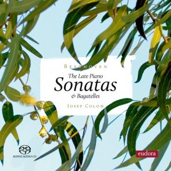 Cover Beethoven: Late Piano Sonatas & Bagatelle